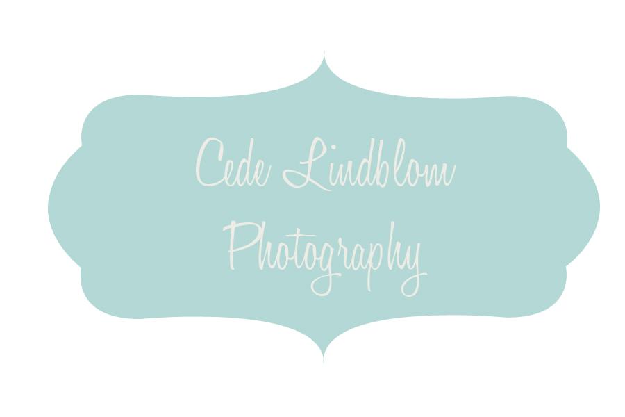 Cede Lindblom Photography