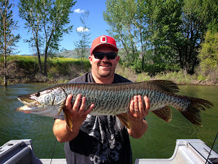 Bobbers Big Pineview Musky