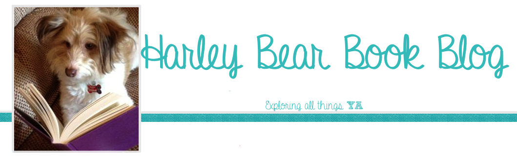 Harley Bear Book Blog