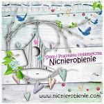 WWW.NICNIEROBIENIE.COM