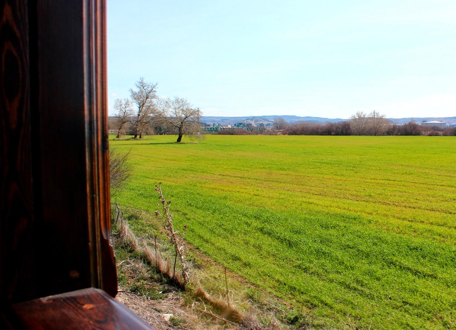Paisajes por la ventana de un tren de vapor. Tren de Arganda