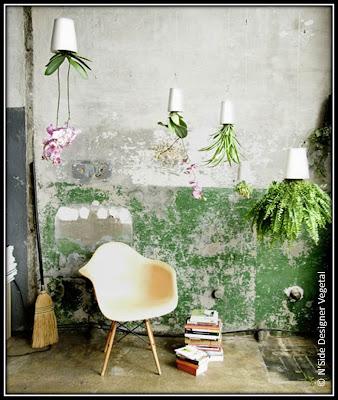 NSide designer végétal, boutique rue Papassaudi Aix-en-Provence, mur végétaux, création végétale