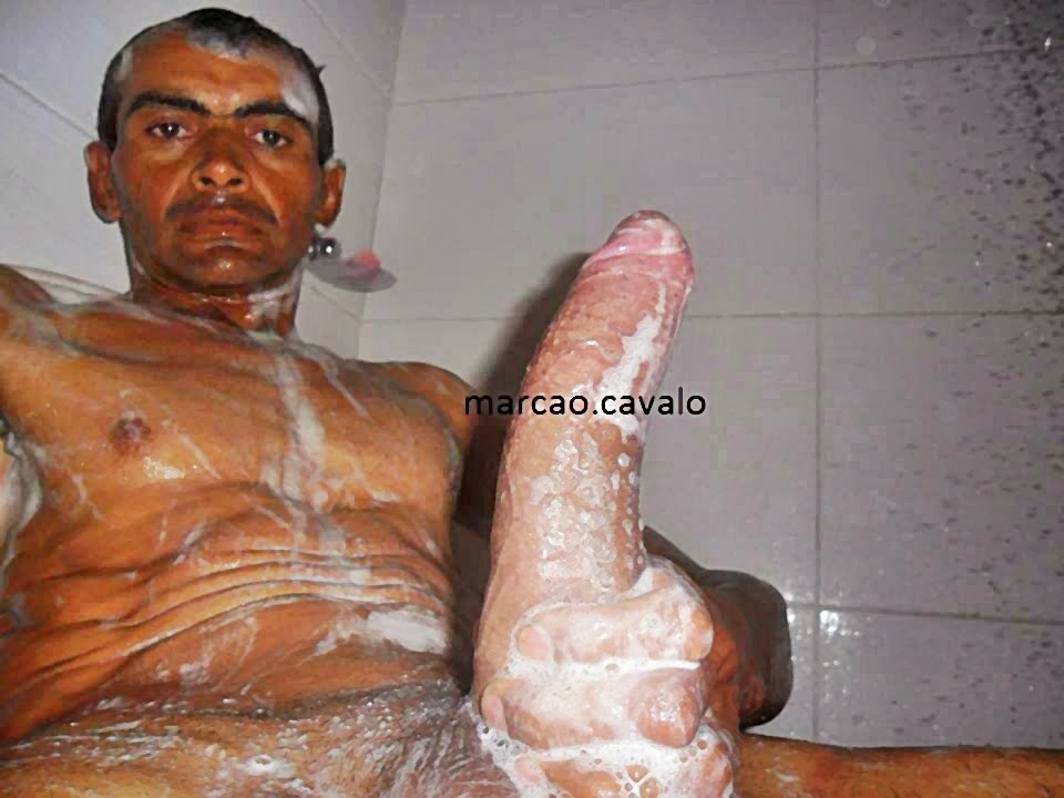 marcao cavalo 32cm monster brasilia