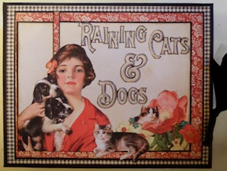 Raining Cats and Dogs Album Cover Picture Clare Charvill Graphic 45
