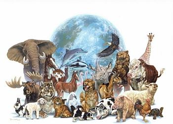 Bütün Hayvanlar Şehirde Oyunu