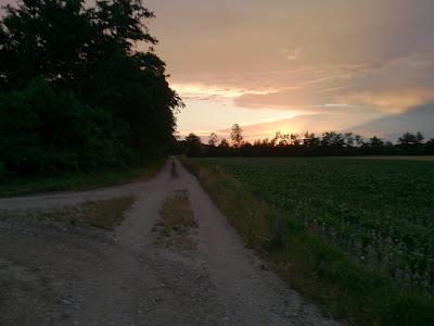 … den Sonnenuntergang genießen