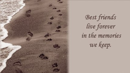 Inn Trending » Inspirational Quotes About Death Of A Pet