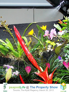 PeapodLife's Living Wall Ecosystem at Property Show Toronto 2013, photo by Olga Goubar