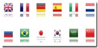 google translate with flag