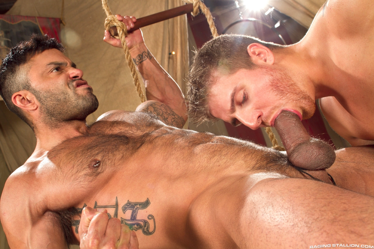 Rogan Richards Gay Porn Star