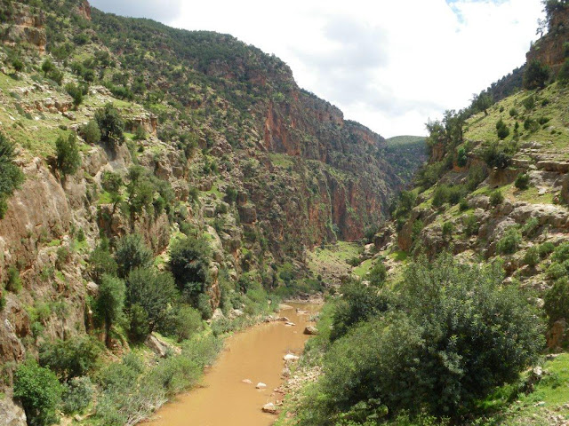 marrocos - Na Terra do Sol Poente - Viagem a solo por Marrocos - Página 2 IMGP0509