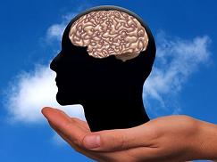 to optimization right brain