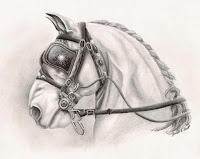 horse drawing, equine artwork, realism horse art