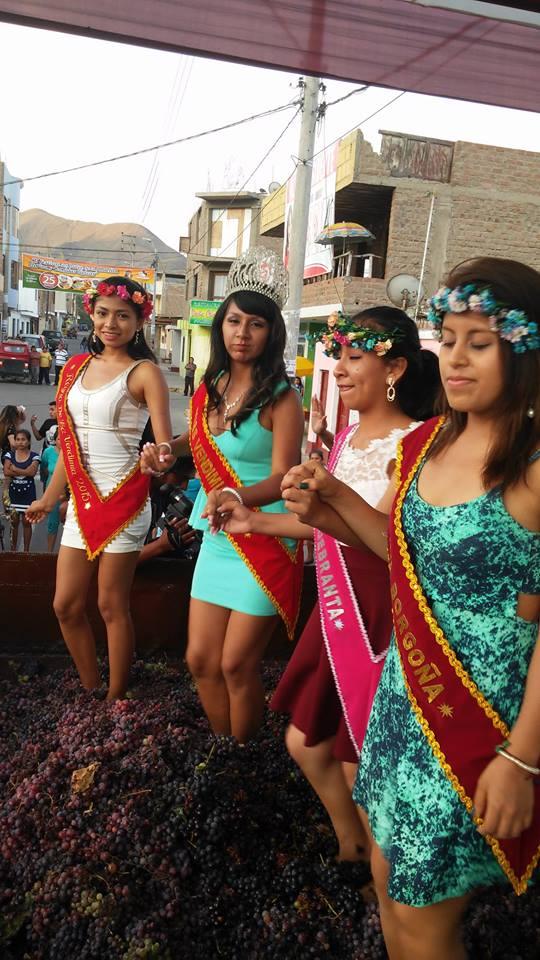 Vendimia Santa Cruz de Flores