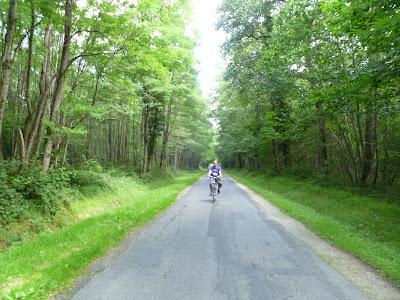 Bosque a Chenonceau