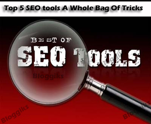 Top 5 SEO tools A Whole Bag Of Tricks
