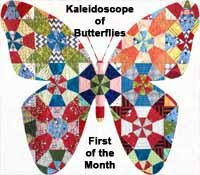 Kaleidoscope of Butterflies