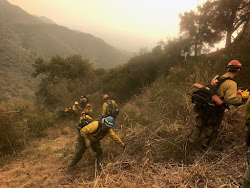 Last December's Thomas Fire was California's largest wildfire in modern times