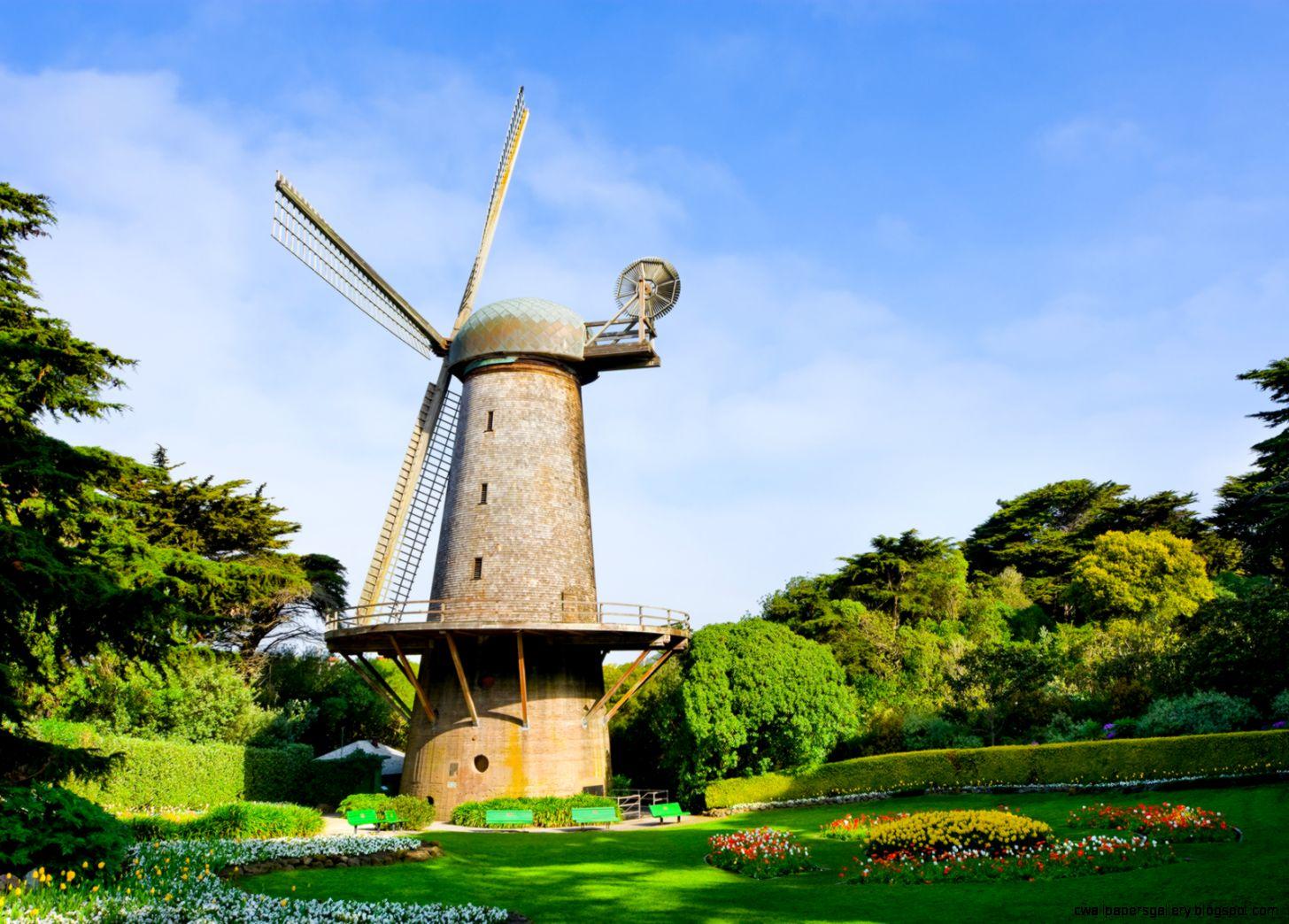 Golden Gate Park Windmills  Tulips
