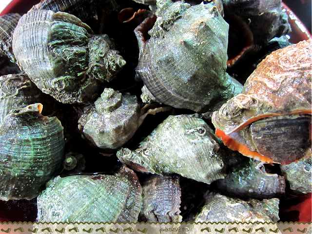 Caracoles. Pescadería Kumpkapi
