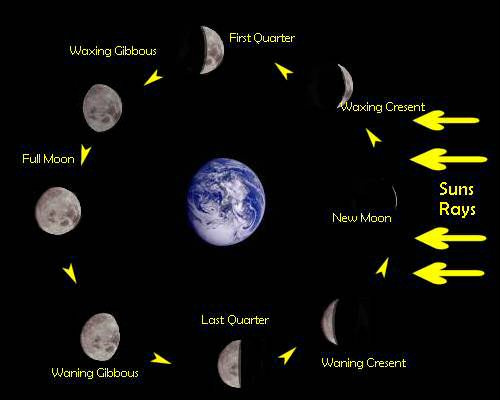moon phases in order. Moon Phases For Kids. phases
