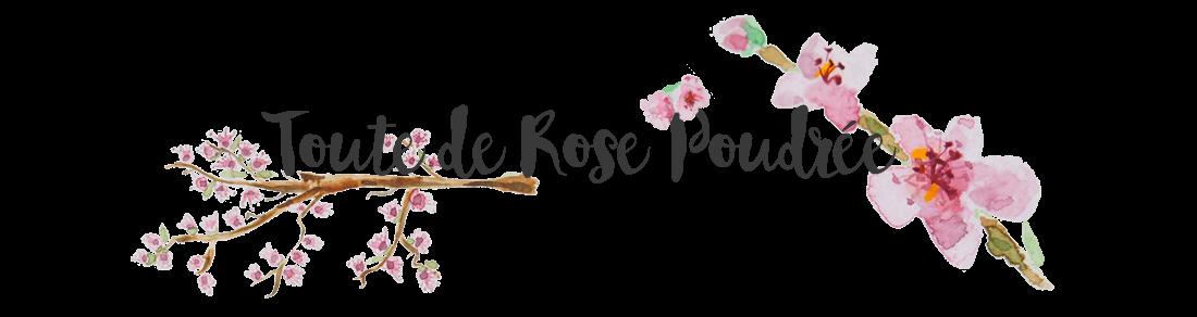 Toute de Rose Poudrée | Blog Beauté