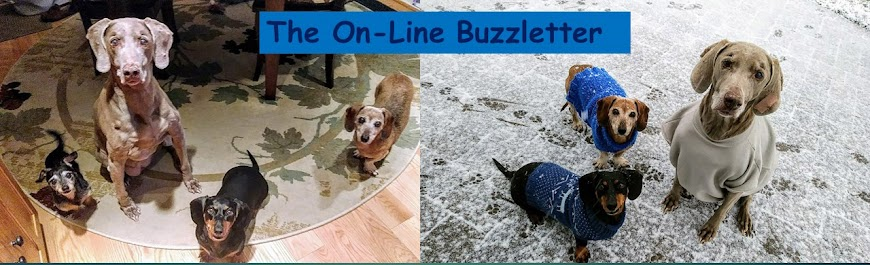 The On-Line Buzzletter