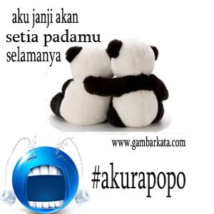 Foto Profil Dan Dp Bbm Aku Rapopo Review Smartphone Tablet Hp Android