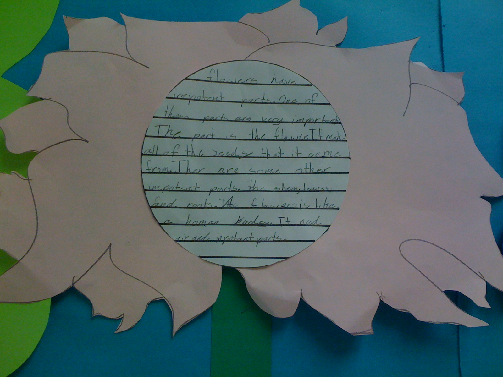 Crayon bits a first grade blog a garden of plant facts for Garden plant information