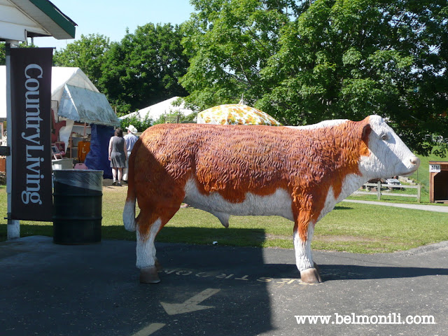 bel monili, country living fair, country living, magazine, cow, bovine
