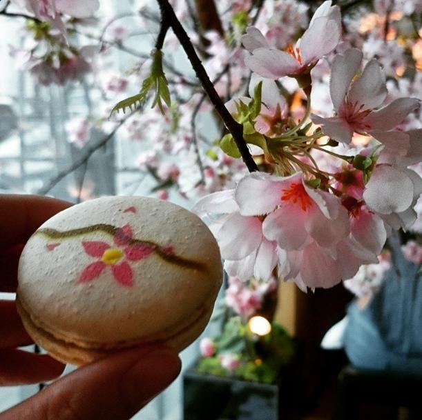 Sakura Cherry Macaron at Sake no Hana
