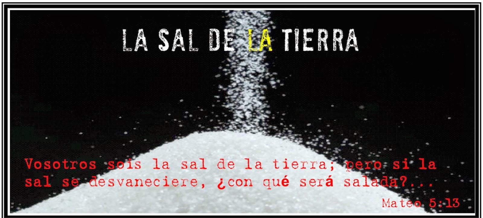 la sal Cómo usar la sal para diferentes cosas en la casa la sal es un muy buen condimento para usar y también se usa como un preservador natural ya que evita que crezca moho, bacteria y hongo pero, ¿sabías que tiene más de 14,000 usos.