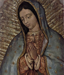 Our Lady of Guadalupe-Pray for Us