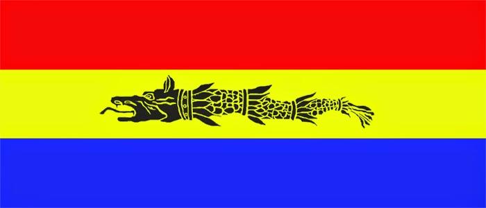 Propunere Pentru Noul Drapel Al Romaniei
