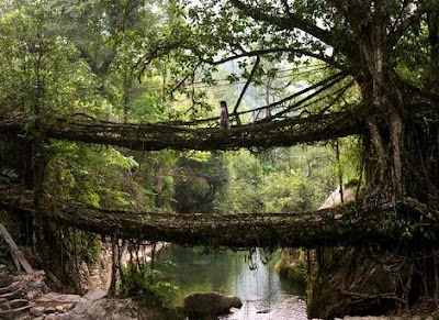 7 Jembatan Paling Unik di Dunia