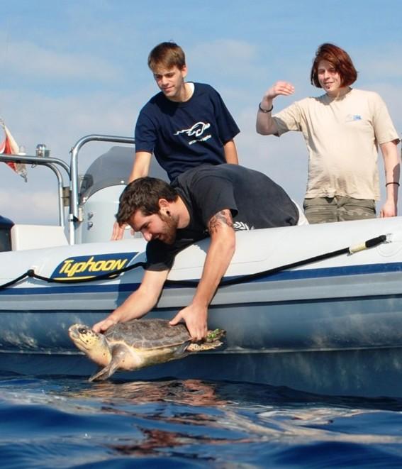 23 Μαΐου, Παγκόσμια ημέρα της Χελώνας και 5 απλοί τρόποι να προστατέψουμε τις θαλάσσιες χελώνες!