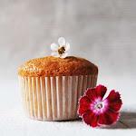 Casita de muffins abre sus puertas. Para los más golosos...
