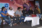 Allu Arjun's Julayi Movie Success Meet Photos-thumbnail-5
