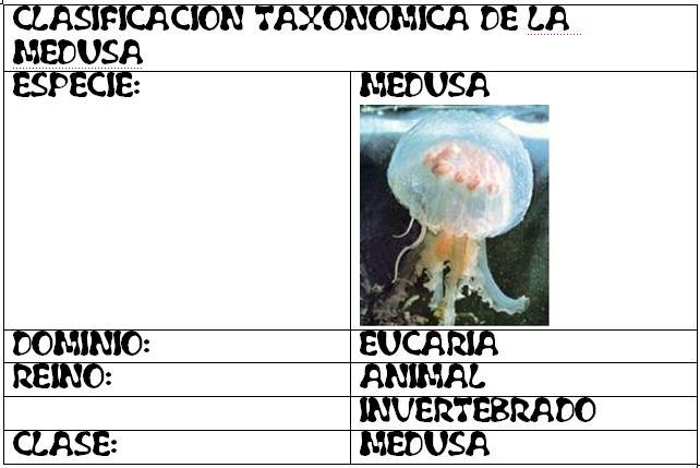Medusa Garcia