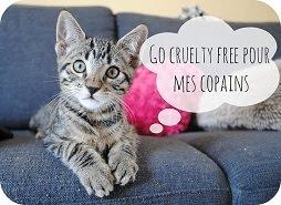 Ma liste cruelty free