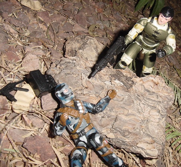 2004 Anti Venom Barricade, TRU Exclusive, 2004 Urban Assault Firefly