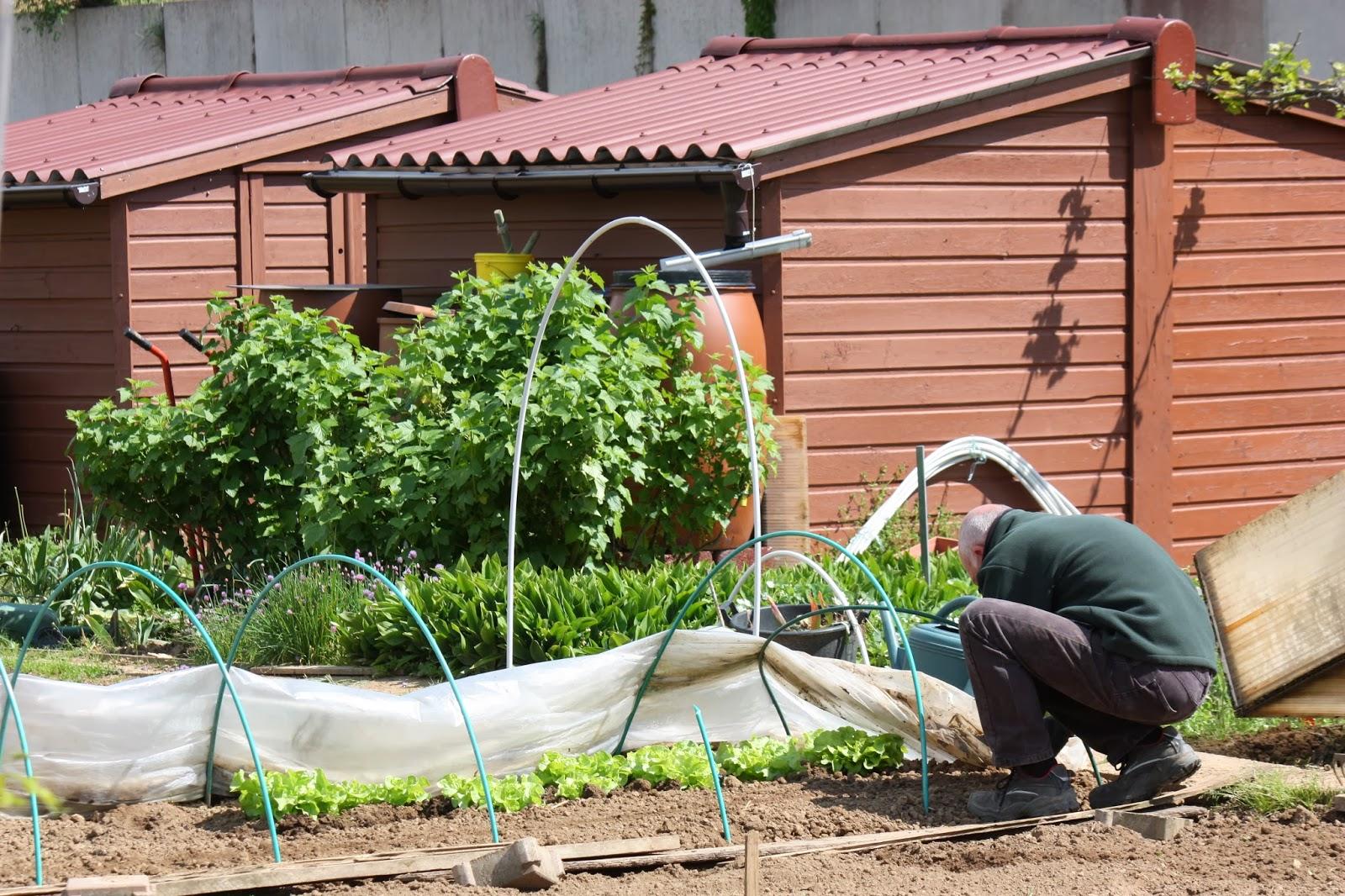 Jardins familiaux de savigny le temple seine et marne for Jardins de jardiniers