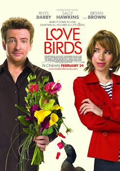 Ver Película En Busca del Amor Online Gratis (2011)