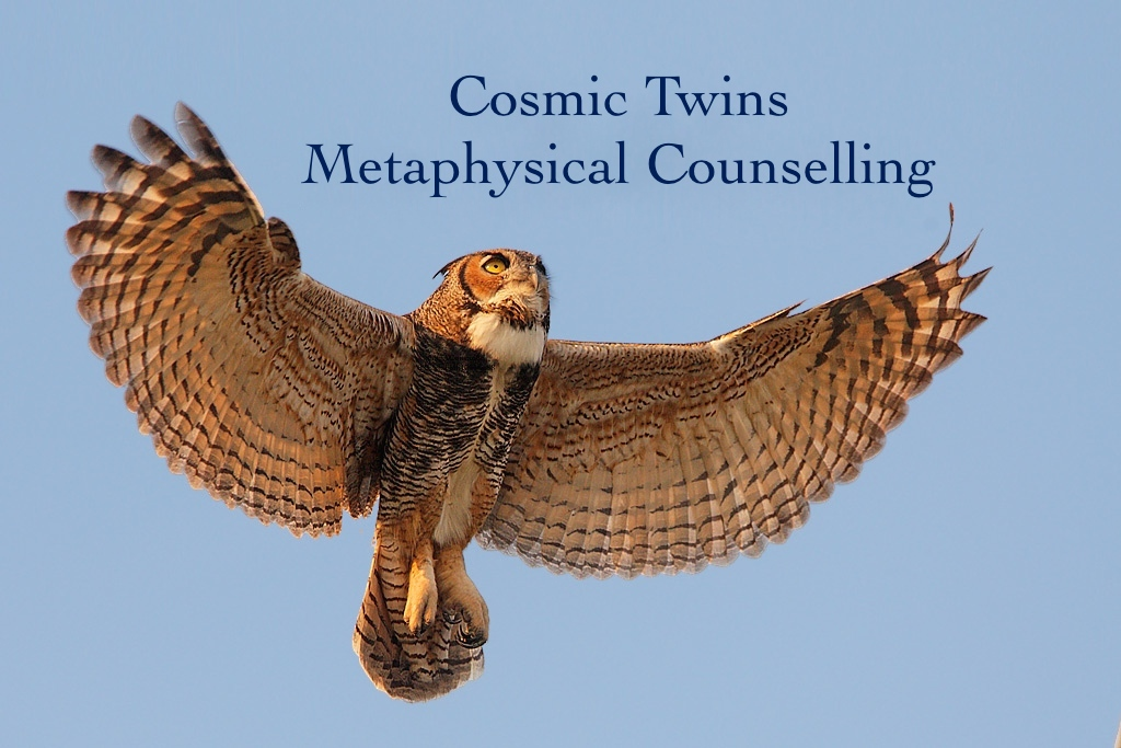 Cosmic Twins Metaphysical Counselling