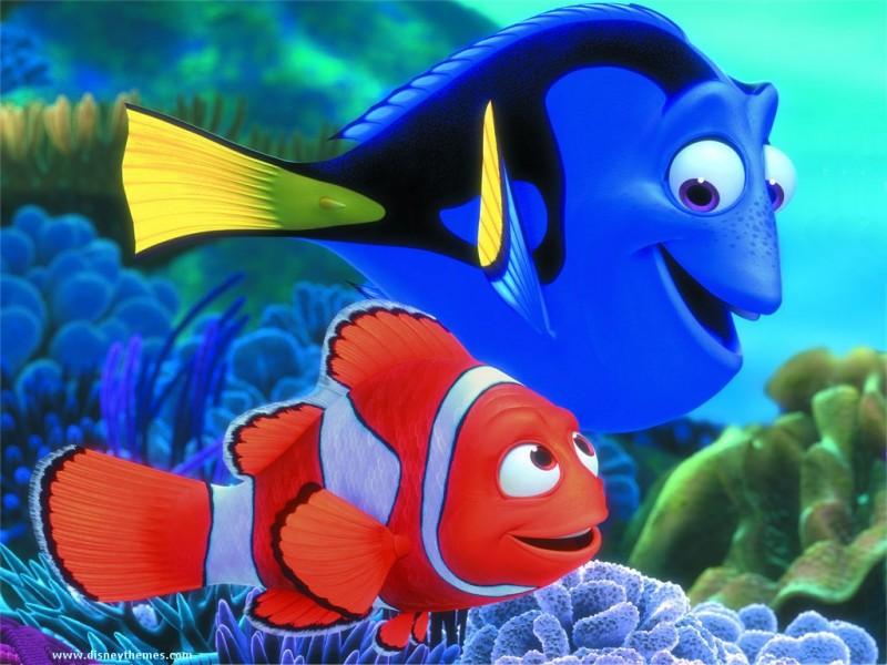 ESTRELA DALVA A CANOA ALADA Procurando Nemo Desenho Animado
