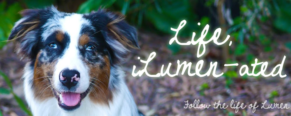 Life, iLumen-ated