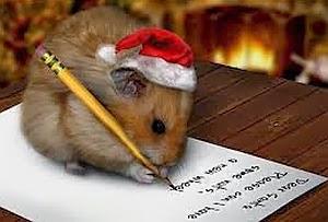 Imagenes Graciosas, Hamsters