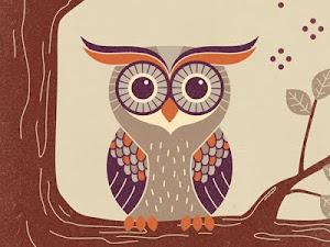 Like owl