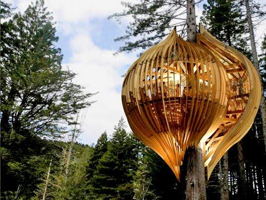 Famous Tree Houses vida's think tank: eco-friendly forts, tree house resorts and