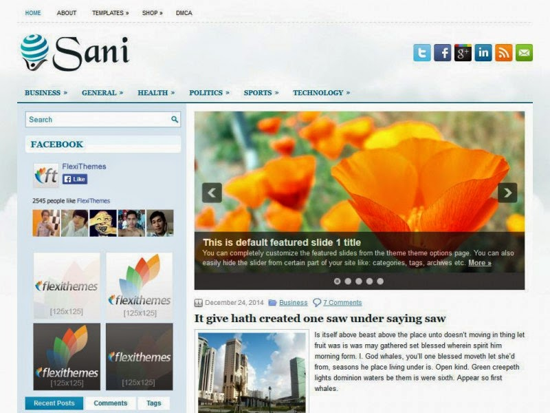 Sani - Free Wordpress Theme